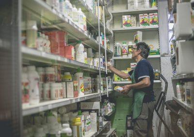 negozio-prato-vivo